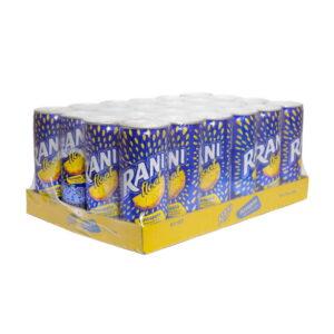 Rani Float Ananas